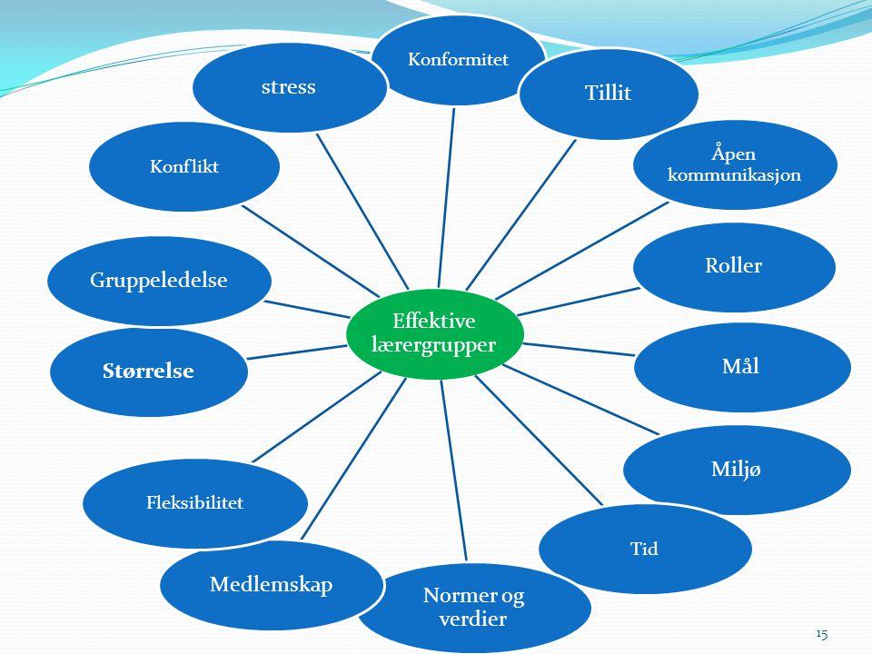 15 Effektive lærergrupper Konformitet Tillit Åpen kommunikasjon RollerMålMiljø Tid Normer og verdier Medlemskap Fleksibilitet StørrelseGruppeledelse Konflikt stress