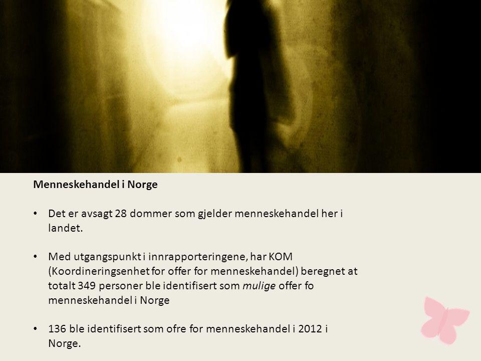 Menneskehandel i Norge • Det er avsagt 28 dommer som gjelder menneskehandel her i landet.