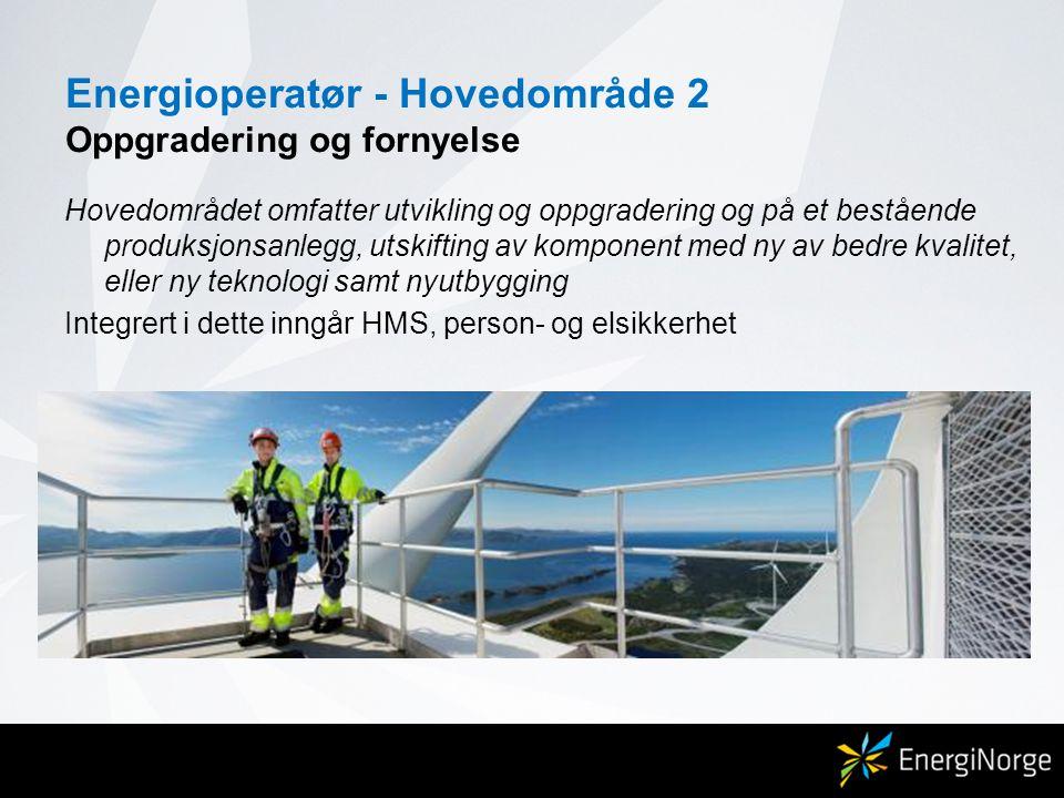 Energioperatør - Hovedområde 2 Oppgradering og fornyelse Hovedområdet omfatter utvikling og oppgradering og på et bestående produksjonsanlegg, utskift