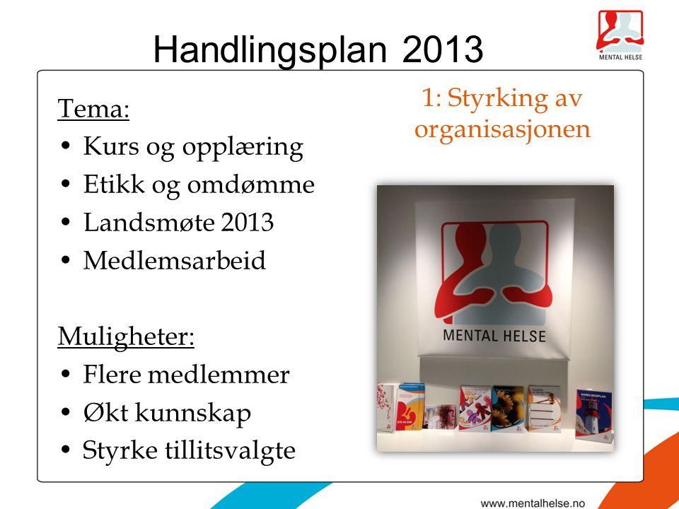 1: Styrking av organisasjonen Tema: •Kurs og opplæring •Etikk og omdømme •Landsmøte 2013 •Medlemsarbeid Muligheter: •Flere medlemmer •Økt kunnskap •Styrke tillitsvalgte Handlingsplan 2013
