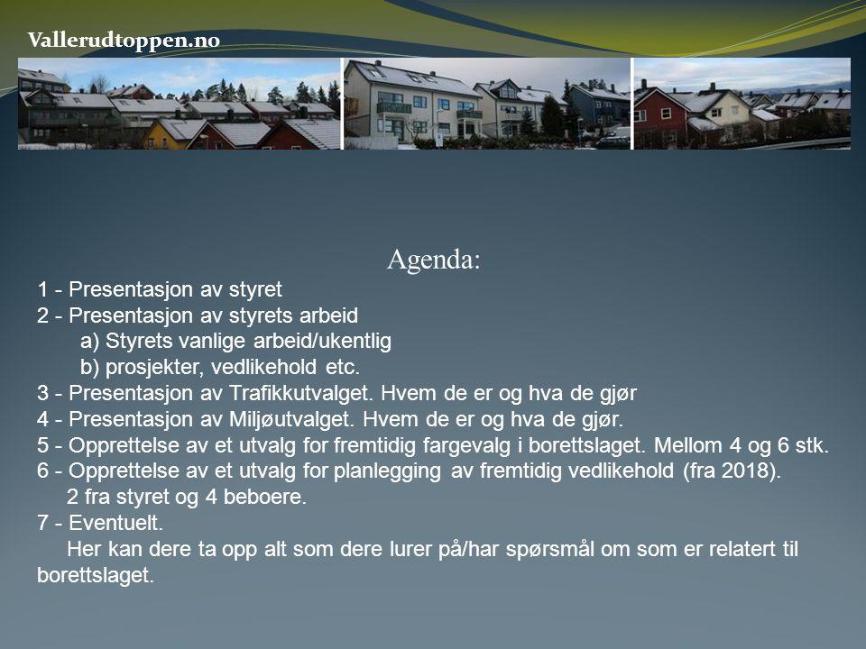 Vallerudtoppen.no Agenda: 1 - Presentasjon av styret 2 - Presentasjon av styrets arbeid a) Styrets vanlige arbeid/ukentlig b) prosjekter, vedlikehold etc.