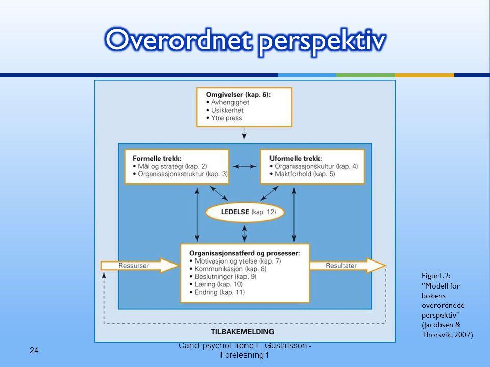 """Cand. psychol. Irene L. Gustafsson - Forelesning 1 24 Figur1.2: """"Modell for bokens overordnede perspektiv"""" (Jacobsen & Thorsvik, 2007)"""