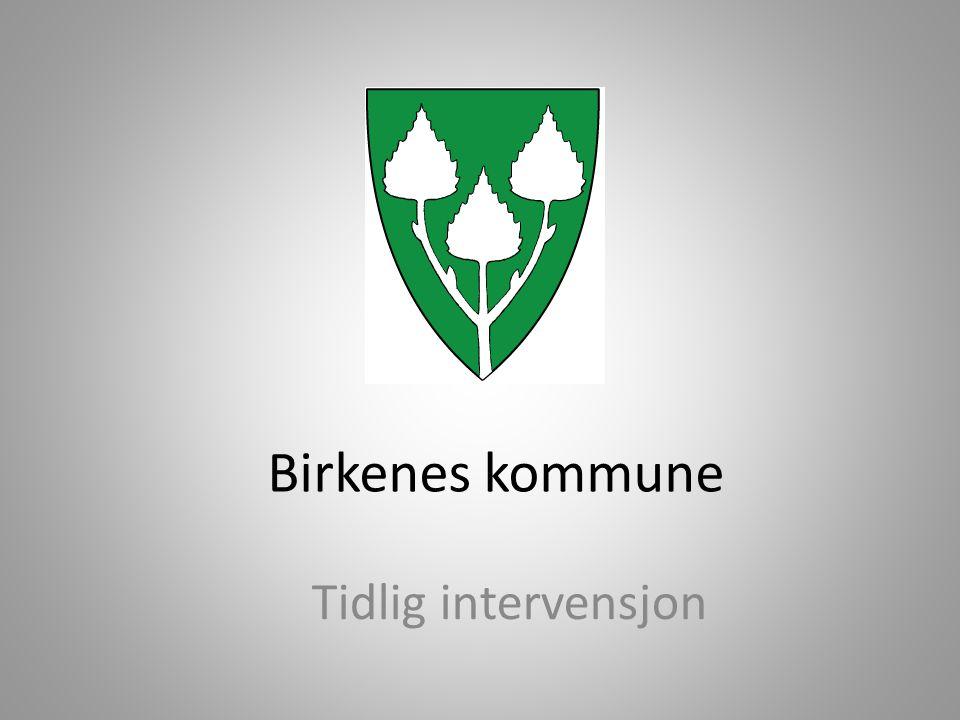 Birkenes kommune • Ca.