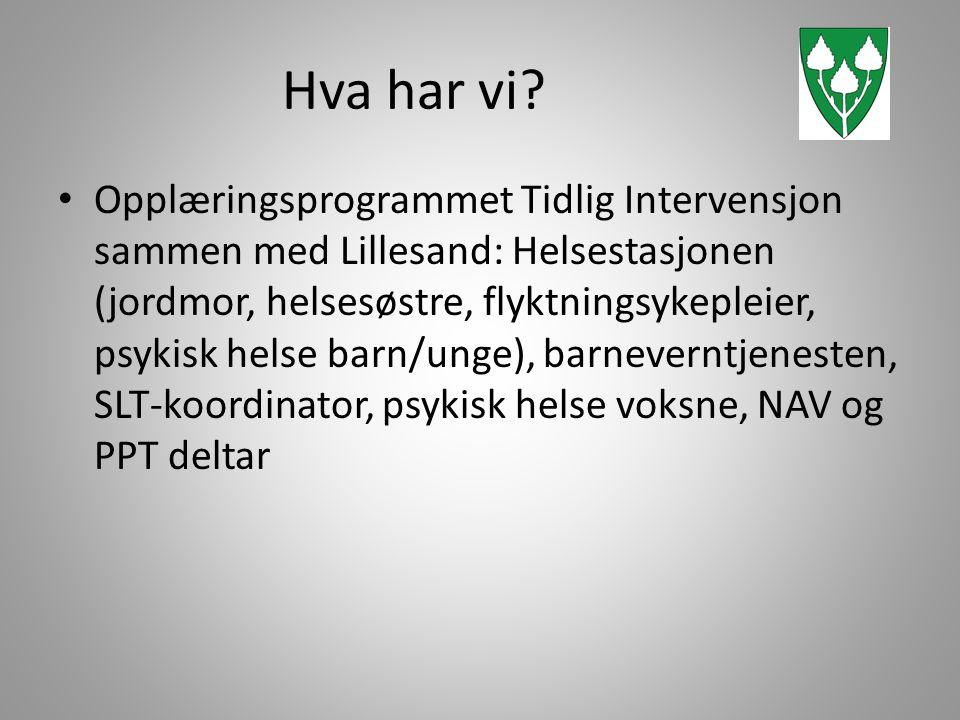 Hva har vi? • Opplæringsprogrammet Tidlig Intervensjon sammen med Lillesand: Helsestasjonen (jordmor, helsesøstre, flyktningsykepleier, psykisk helse