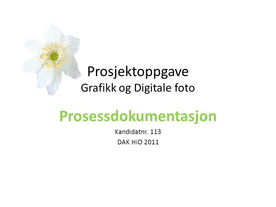 Prosjektoppgave Grafikk og Digitale foto Prosessdokumentasjon Kandidatnr. 113 DAK HiO 2011