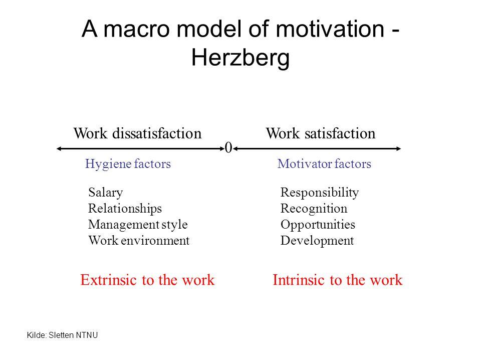 A macro model of motivation - Herzberg Work dissatisfactionWork satisfaction Hygiene factorsMotivator factors SalaryResponsibility RelationshipsRecogn