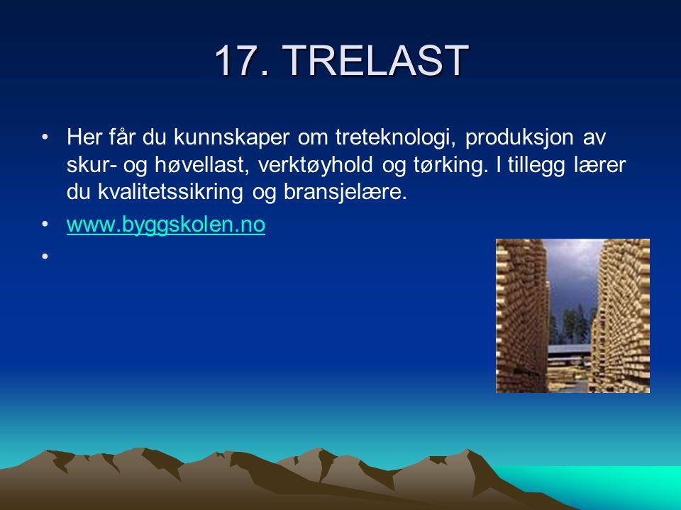 17. TRELAST •Her får du kunnskaper om treteknologi, produksjon av skur- og høvellast, verktøyhold og tørking. I tillegg lærer du kvalitetssikring og b