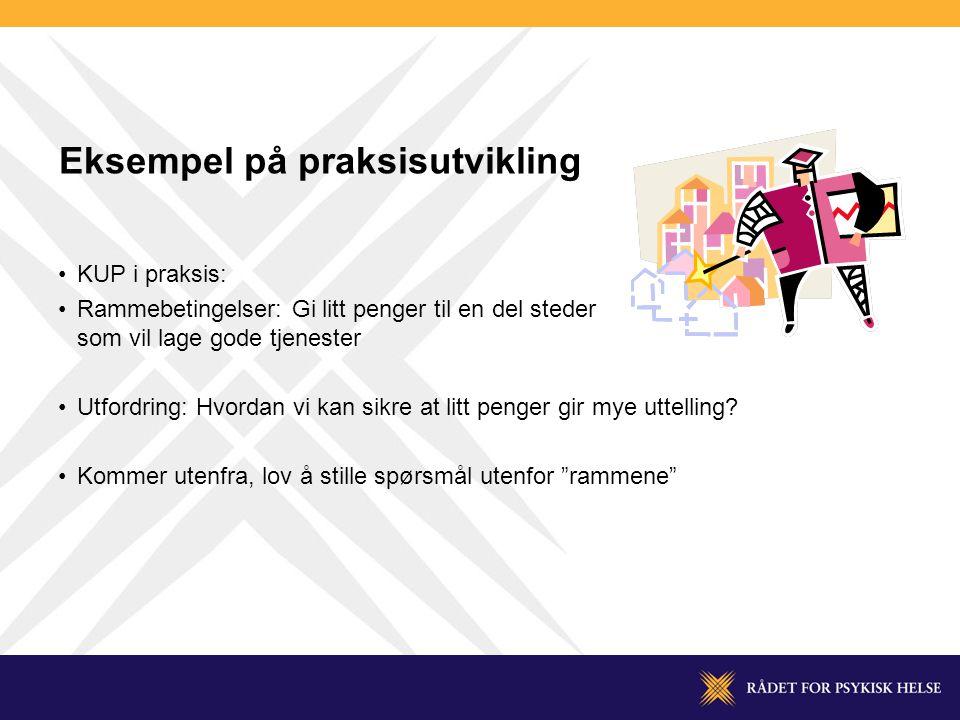 Eksempel på praksisutvikling •KUP i praksis: •Rammebetingelser: Gi litt penger til en del steder som vil lage gode tjenester •Utfordring: Hvordan vi kan sikre at litt penger gir mye uttelling.