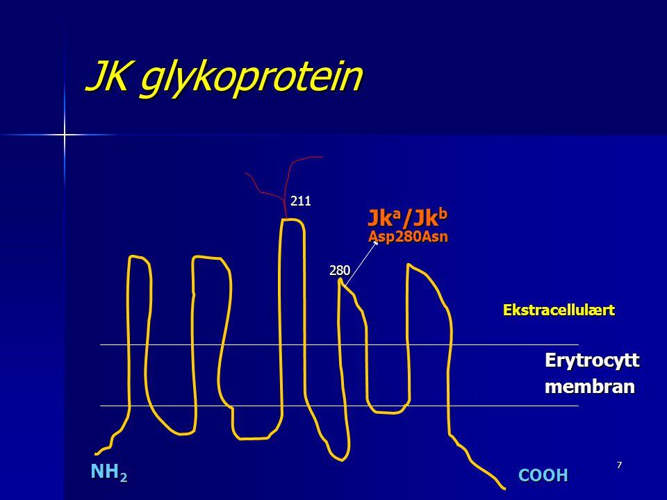 8 Kidd lokus  JK i kromosom 18. HUT11 gen som koder for urea- transport proteinet.