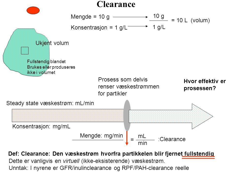 Utskiller renin ved volumreguleringen Utskiller vasoaktive substanser ved auto-reguleringen (prostaglandiner, katekolaminer, adenosin, kininer)?