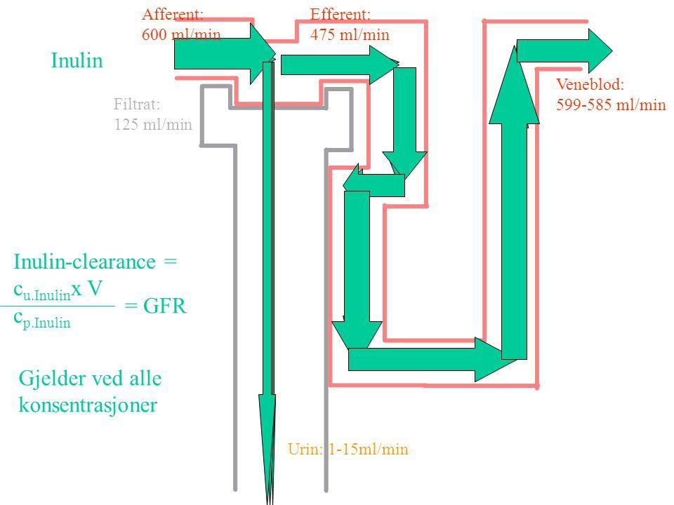 Mengde = 10 g 10 g Konsentrasjon = 1 g/L 1 g/L = 10 L (volum) Fullstendig blandet Brukes eller produseres ikke i volumet Ukjent volum Steady state væs