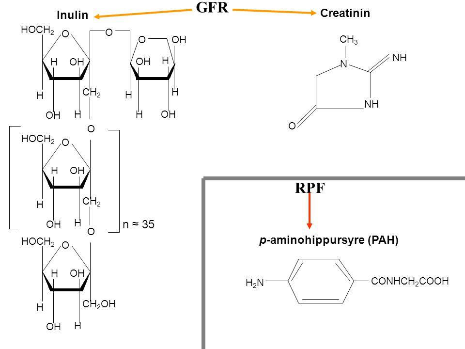 C l e a r a n c e ( m l / m i n ) Konsentrasjon Inulin PAH Glukose C u.PAH x V = c p.PAH x GFR + T m.PAH /c p.PAH = C u.PAH x V c p.PAH x GFR + T m.PA