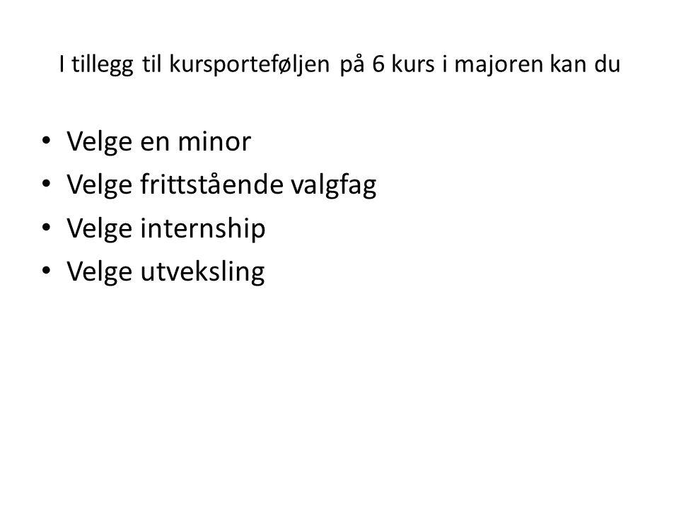 I tillegg til kursporteføljen på 6 kurs i majoren kan du • Velge en minor • Velge frittstående valgfag • Velge internship • Velge utveksling