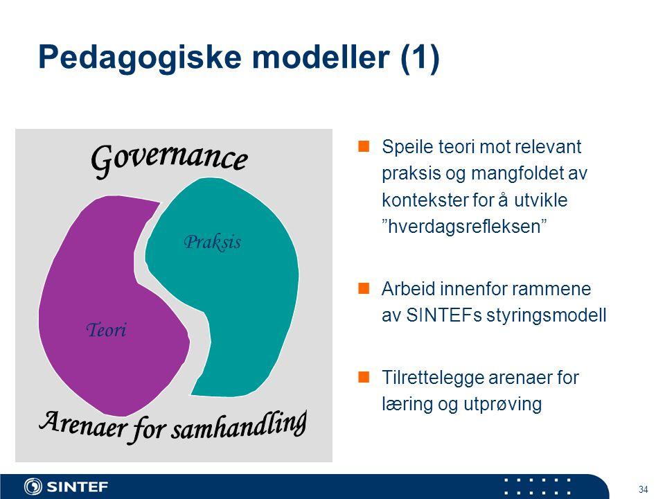 """34 Pedagogiske modeller (1)  Speile teori mot relevant praksis og mangfoldet av kontekster for å utvikle """"hverdagsrefleksen""""  Arbeid innenfor rammen"""