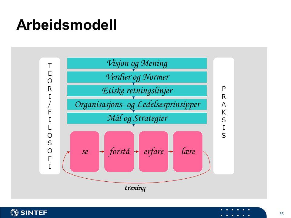 36 Arbeidsmodell Visjon og Mening Verdier og Normer Etiske retningslinjer Organisasjons- og Ledelsesprinsipper Mål og Strategier seforstå erfarelære trening TEORI/FILOSOFITEORI/FILOSOFI PRAKSISPRAKSIS