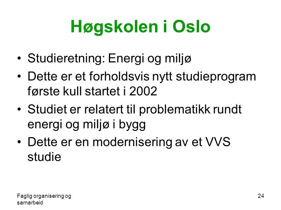Faglig organisering og samarbeid 24 Høgskolen i Oslo •Studieretning: Energi og miljø •Dette er et forholdsvis nytt studieprogram første kull startet i 2002 •Studiet er relatert til problematikk rundt energi og miljø i bygg •Dette er en modernisering av et VVS studie