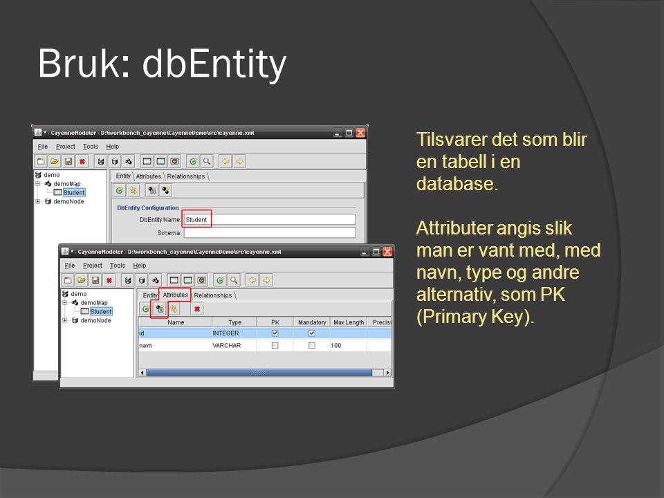 Bruk: dbEntity Tilsvarer det som blir en tabell i en database. Attributer angis slik man er vant med, med navn, type og andre alternativ, som PK (Prim