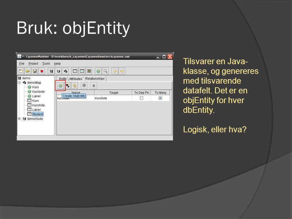 Bruk: objEntity Tilsvarer en Java- klasse, og genereres med tilsvarende datafelt. Det er en objEntity for hver dbEntity. Logisk, eller hva?