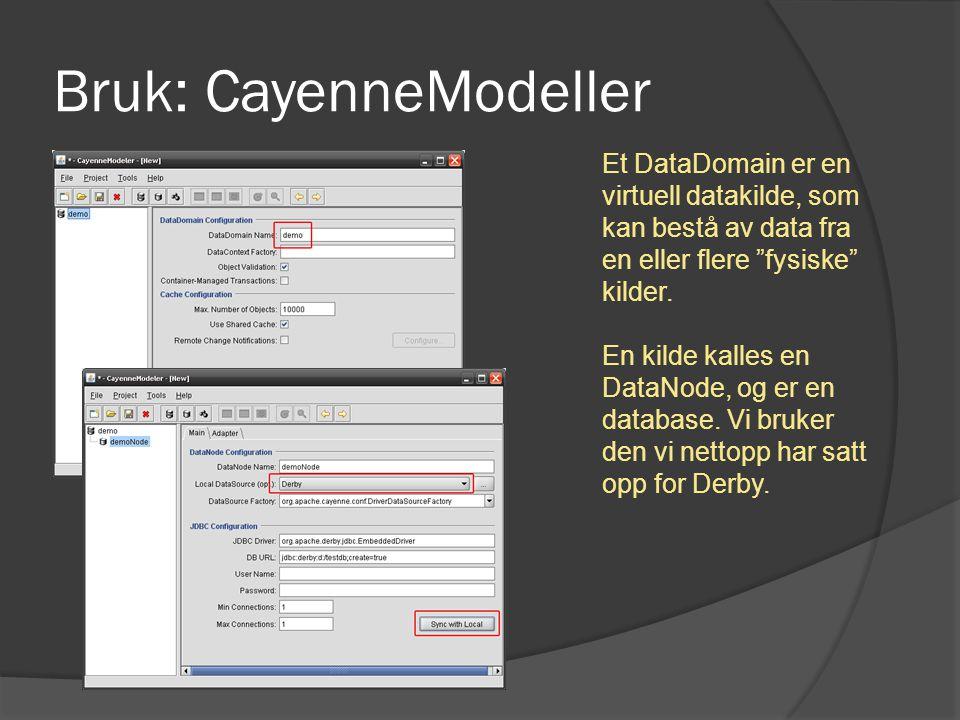 """Bruk: CayenneModeller Et DataDomain er en virtuell datakilde, som kan bestå av data fra en eller flere """"fysiske"""" kilder. En kilde kalles en DataNode,"""