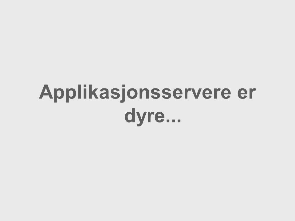 Applikasjonsservere er dyre...
