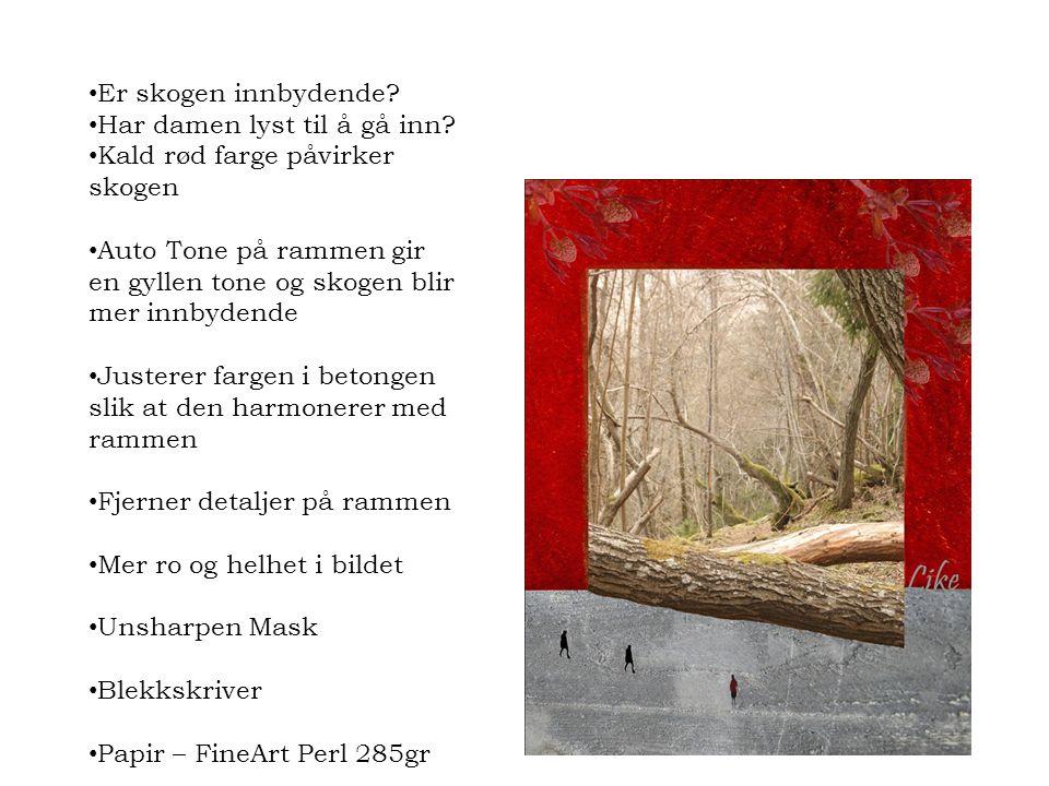 • Er skogen innbydende? • Har damen lyst til å gå inn? • Kald rød farge påvirker skogen • Auto Tone på rammen gir en gyllen tone og skogen blir mer in