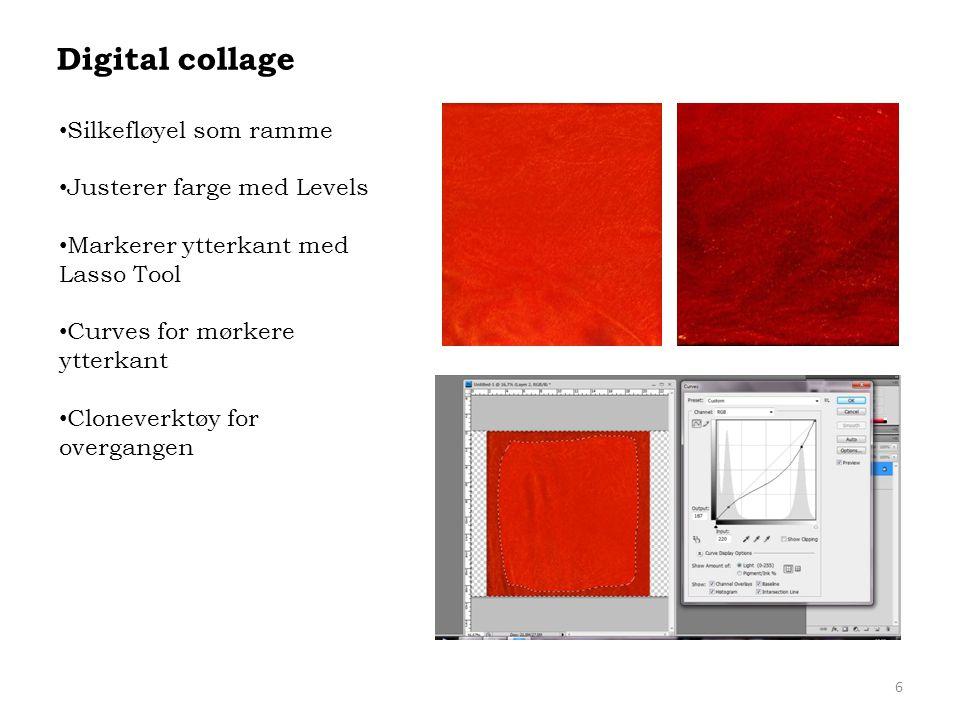 6 Digital collage • Silkefløyel som ramme • Justerer farge med Levels • Markerer ytterkant med Lasso Tool • Curves for mørkere ytterkant • Cloneverktø