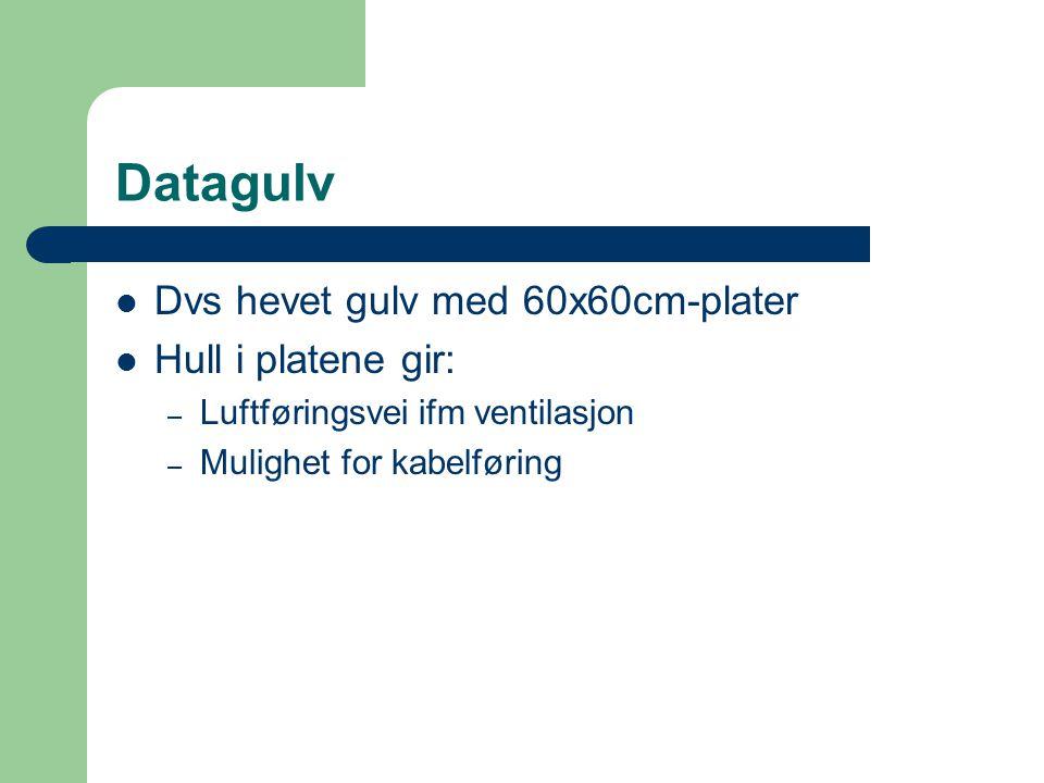 Datagulv  Dvs hevet gulv med 60x60cm-plater  Hull i platene gir: – Luftføringsvei ifm ventilasjon – Mulighet for kabelføring