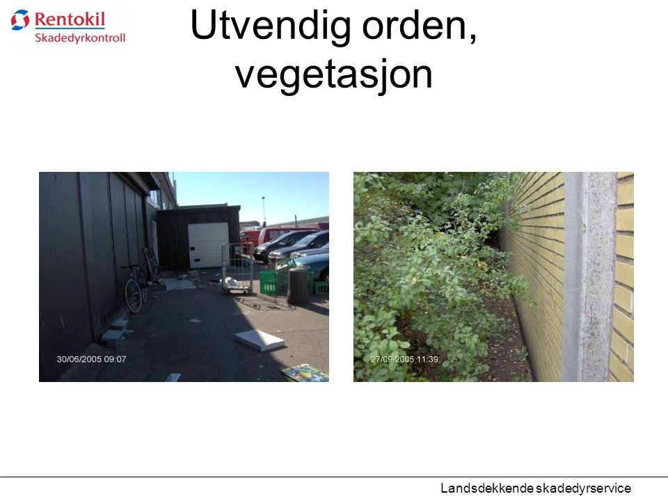 Utvendig orden, vegetasjon Landsdekkende skadedyrservice