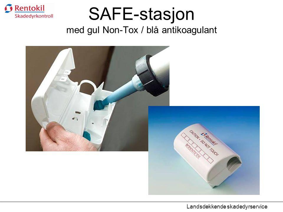 SAFE-stasjon med gul Non-Tox / blå antikoagulant Landsdekkende skadedyrservice