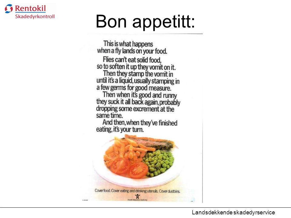 Bon appetitt: Landsdekkende skadedyrservice