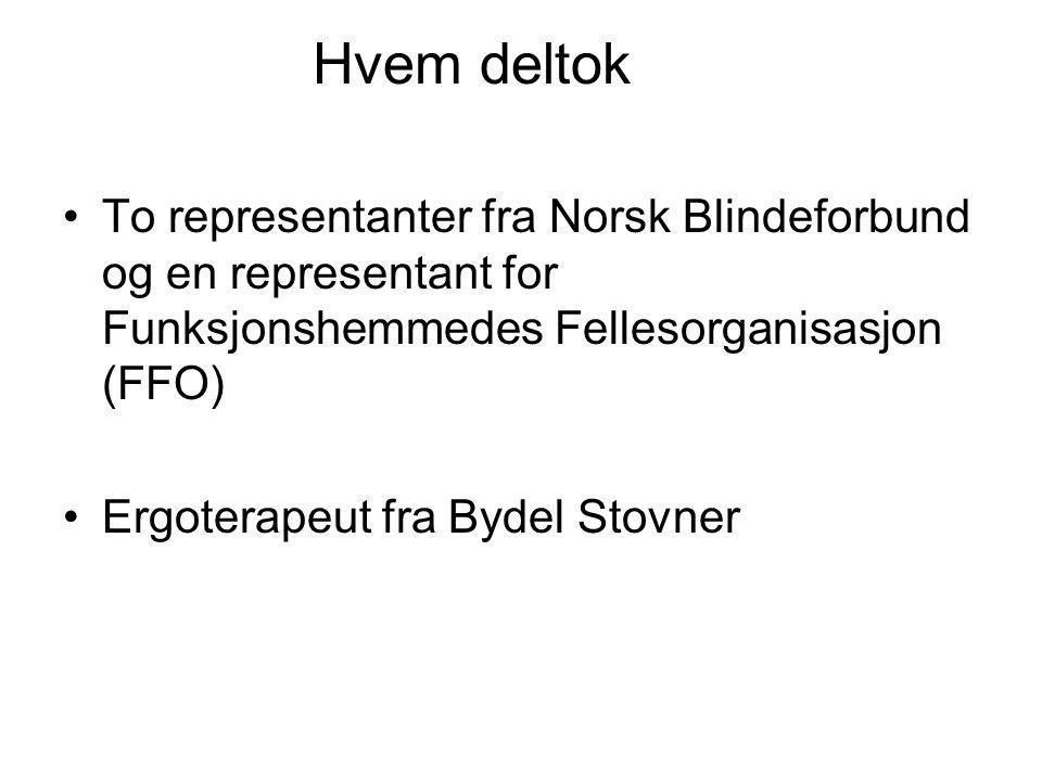 Hvem deltok •To representanter fra Norsk Blindeforbund og en representant for Funksjonshemmedes Fellesorganisasjon (FFO) •Ergoterapeut fra Bydel Stovn