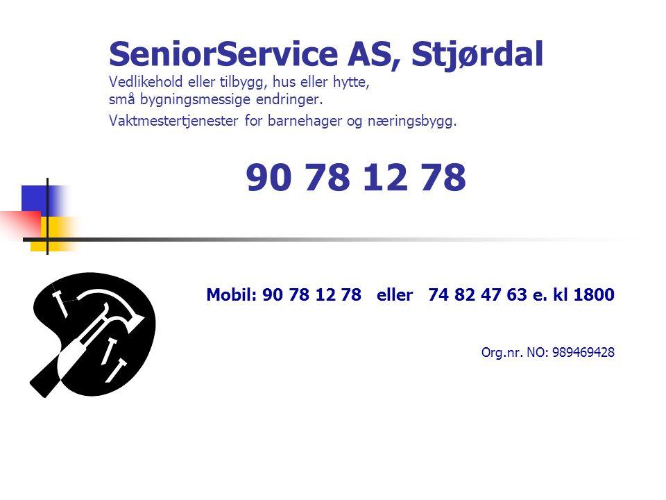 SeniorService AS, Stjørdal Vedlikehold eller tilbygg, hus eller hytte, små bygningsmessige endringer. Vaktmestertjenester for barnehager og næringsbyg