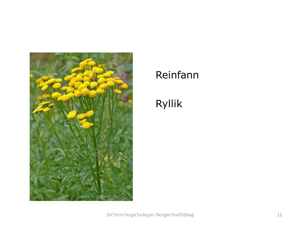 113xf form farge funksjon. Norges Husflidslag Reinfann Ryllik