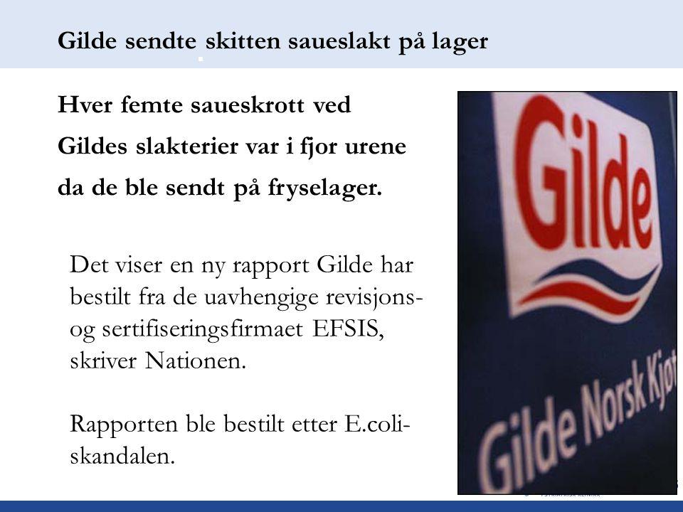 Gilde sendte skitten saueslakt på lager Hver femte saueskrott ved Gildes slakterier var i fjor urene da de ble sendt på fryselager. Det viser en ny ra