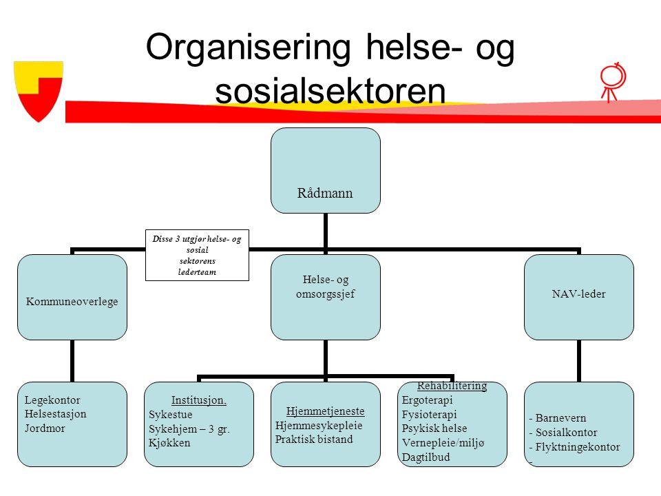 Organisering helse- og sosialsektoren Disse 3 utgjør helse- og sosial sektorens lederteam