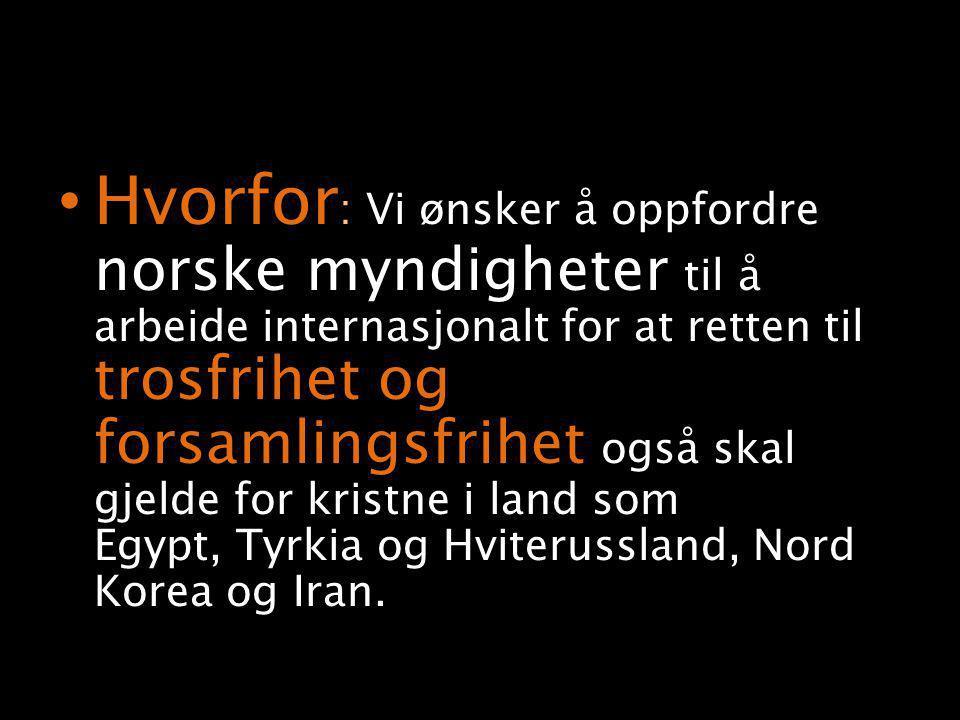 • Hvorfor : Vi ønsker å oppfordre norske myndigheter til å arbeide internasjonalt for at retten til trosfrihet og forsamlingsfrihet også skal gjelde for kristne i land som Egypt, Tyrkia og Hviterussland, Nord Korea og Iran.