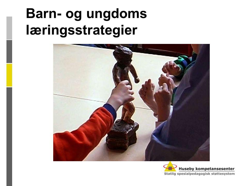 Barn- og ungdoms læringsstrategier