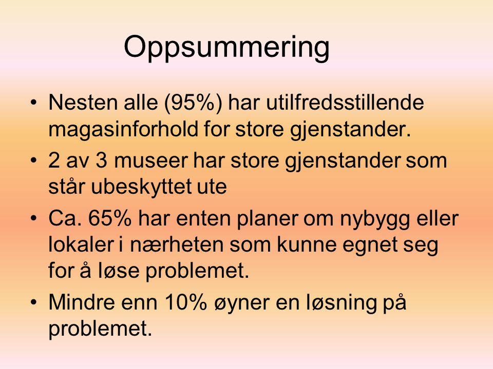 Oppsummering •Nesten alle (95%) har utilfredsstillende magasinforhold for store gjenstander.