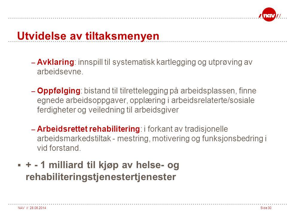 NAV // 28.06.2014Side 30 Utvidelse av tiltaksmenyen – Avklaring: innspill til systematisk kartlegging og utprøving av arbeidsevne. – Oppfølging: bista