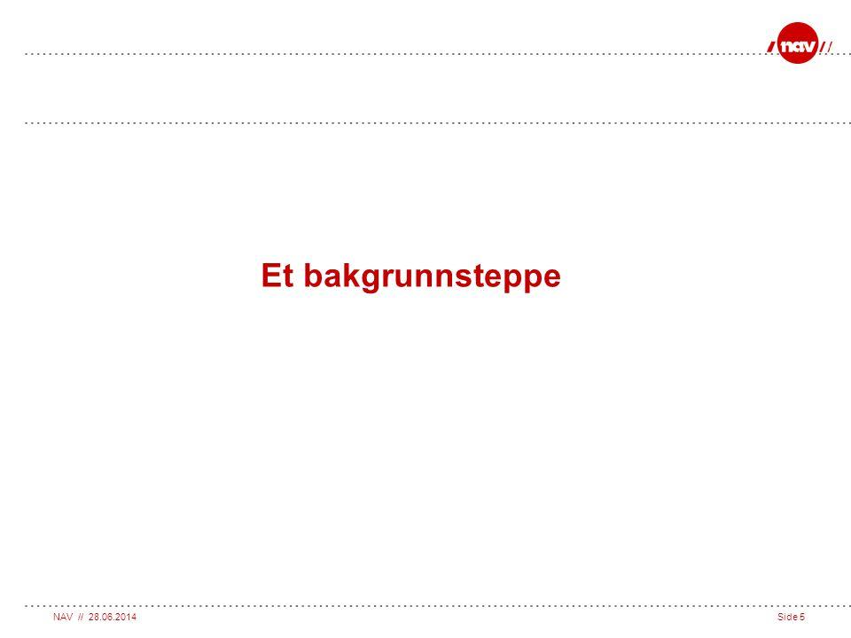 NAV // 28.06.2014Side 5 Et bakgrunnsteppe