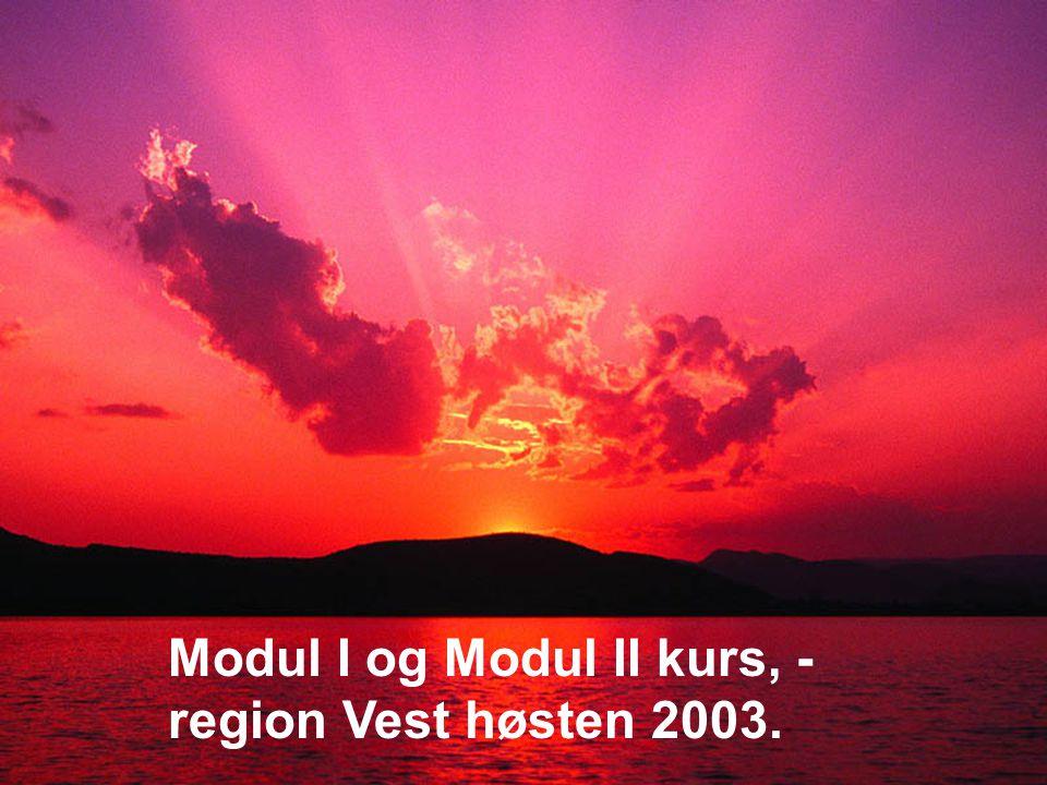 Arve Sigmundstad – Opplæringskonsulent 2fo Modul I og Modul II kurs, - region Vest høsten 2003.