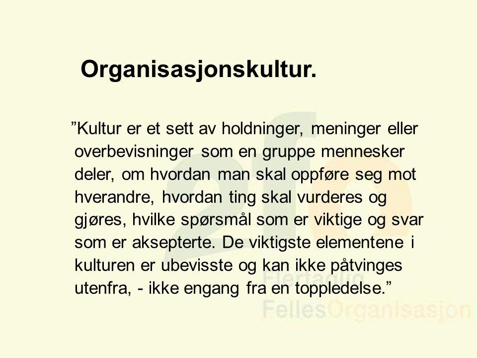"""Arve Sigmundstad – Opplæringskonsulent 2fo Organisasjonskultur. """"Kultur er et sett av holdninger, meninger eller overbevisninger som en gruppe mennesk"""