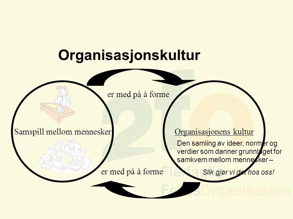 Arve Sigmundstad – Opplæringskonsulent 2fo Organisasjonskultur.