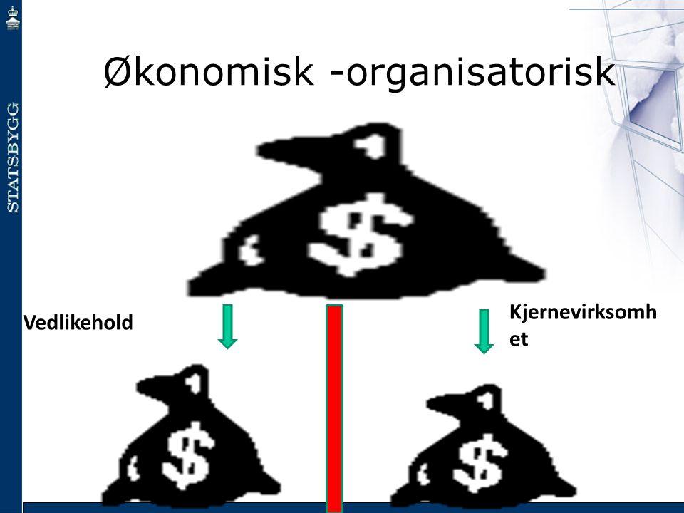 Økonomisk -organisatorisk Vedlikehold Kjernevirksomh et