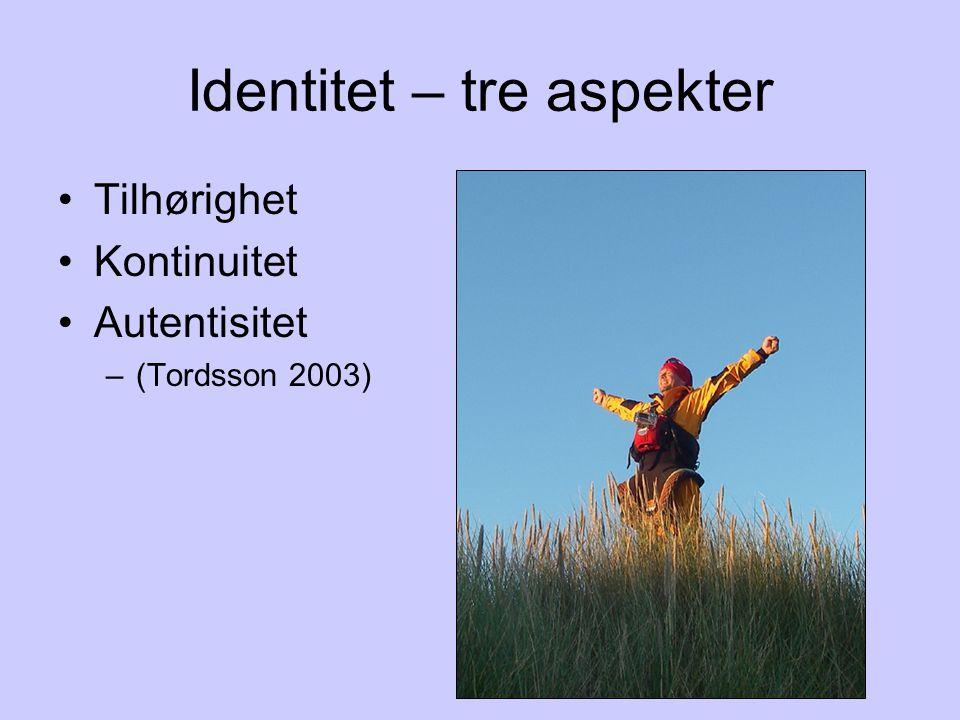 Identitet – tre aspekter •Tilhørighet •Kontinuitet •Autentisitet –(Tordsson 2003)