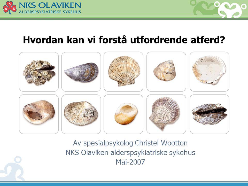 Hvordan kan vi forstå utfordrende atferd? Av spesialpsykolog Christel Wootton NKS Olaviken alderspsykiatriske sykehus Mai-2007