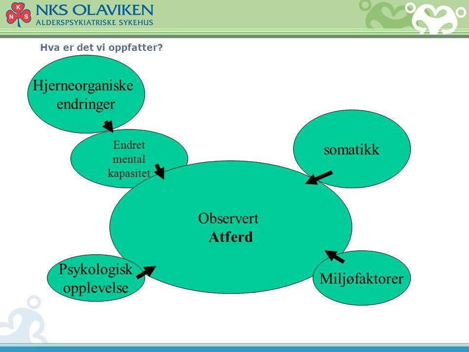Hva er det vi oppfatter? Hjerneorganiske endringer Endret mental kapasitet Observert Atferd somatikk Psykologisk opplevelse Miljøfaktorer