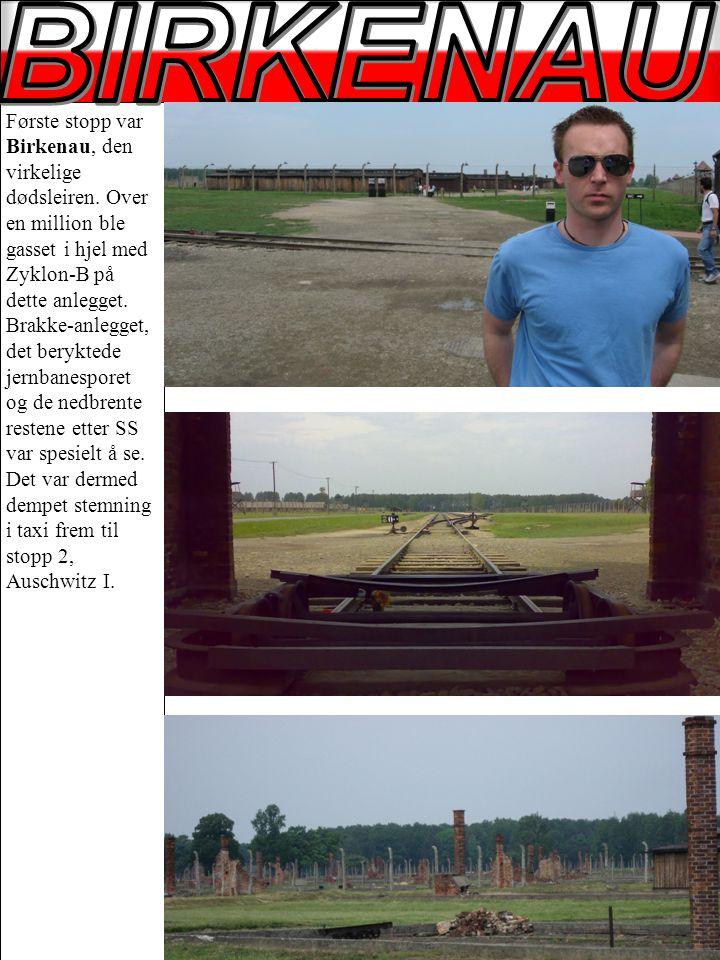 Første stopp var Birkenau, den virkelige dødsleiren.
