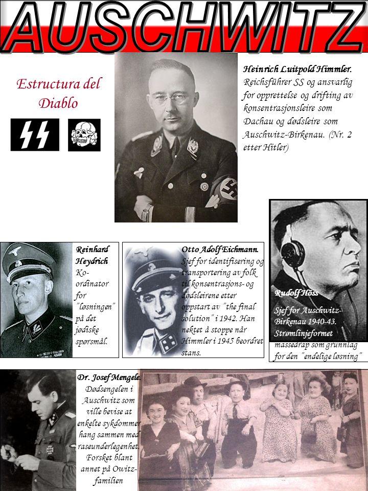 Estructura del Diablo Heinrich Luitpold Himmler.