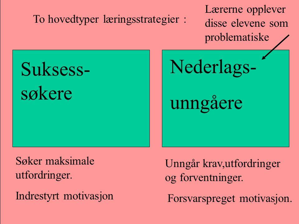 To hovedtyper læringsstrategier : Suksess- søkere Nederlags- unngåere Søker maksimale utfordringer. Indrestyrt motivasjon Unngår krav,utfordringer og